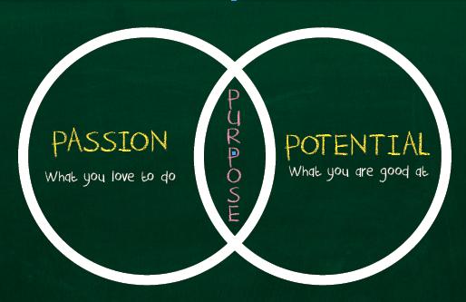 passion vs potential